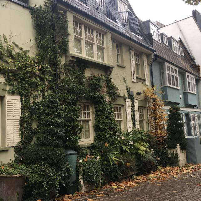 mews-hampstead