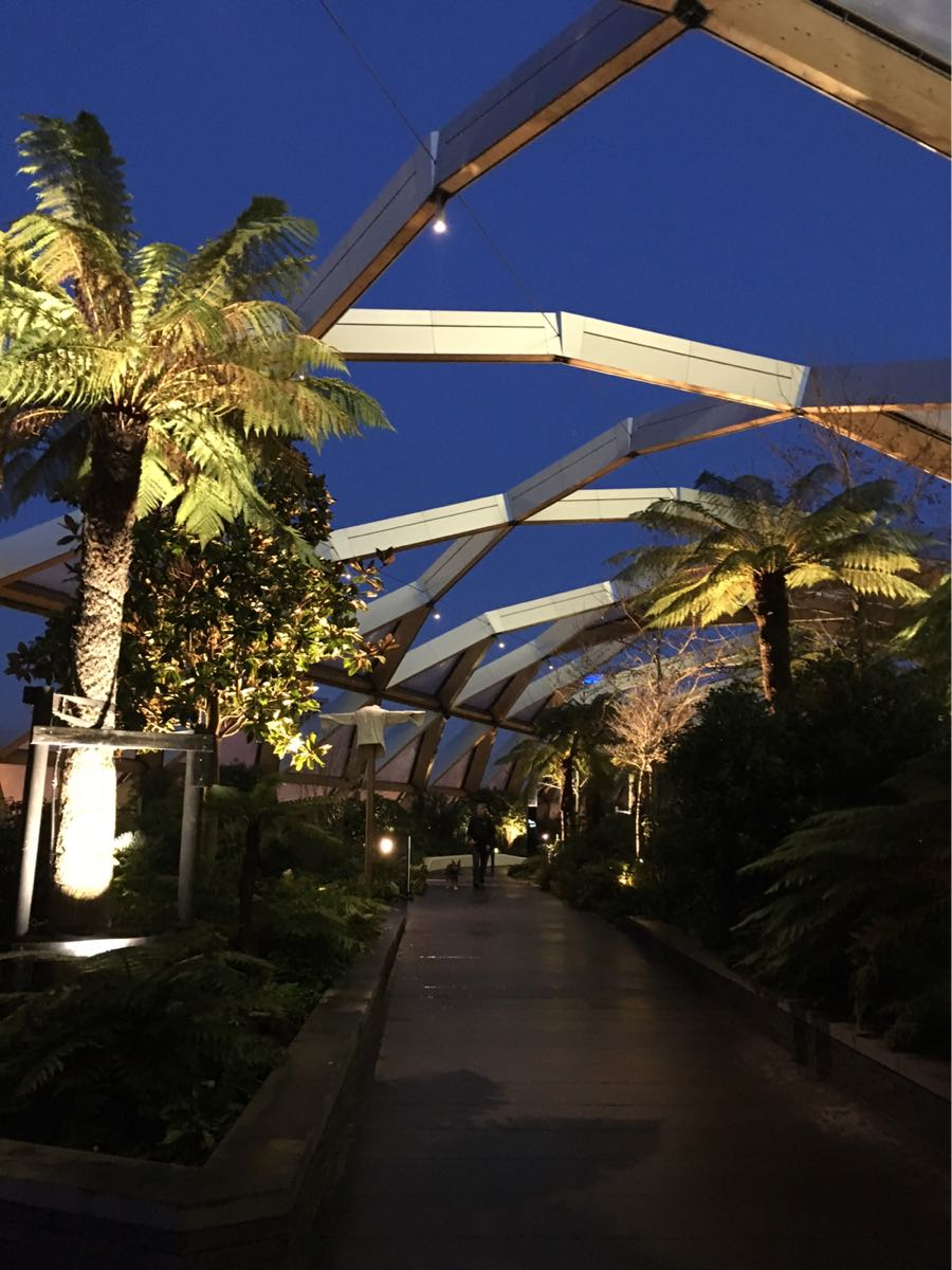 Crossrail place, roof gardens, Canary Wharf, London