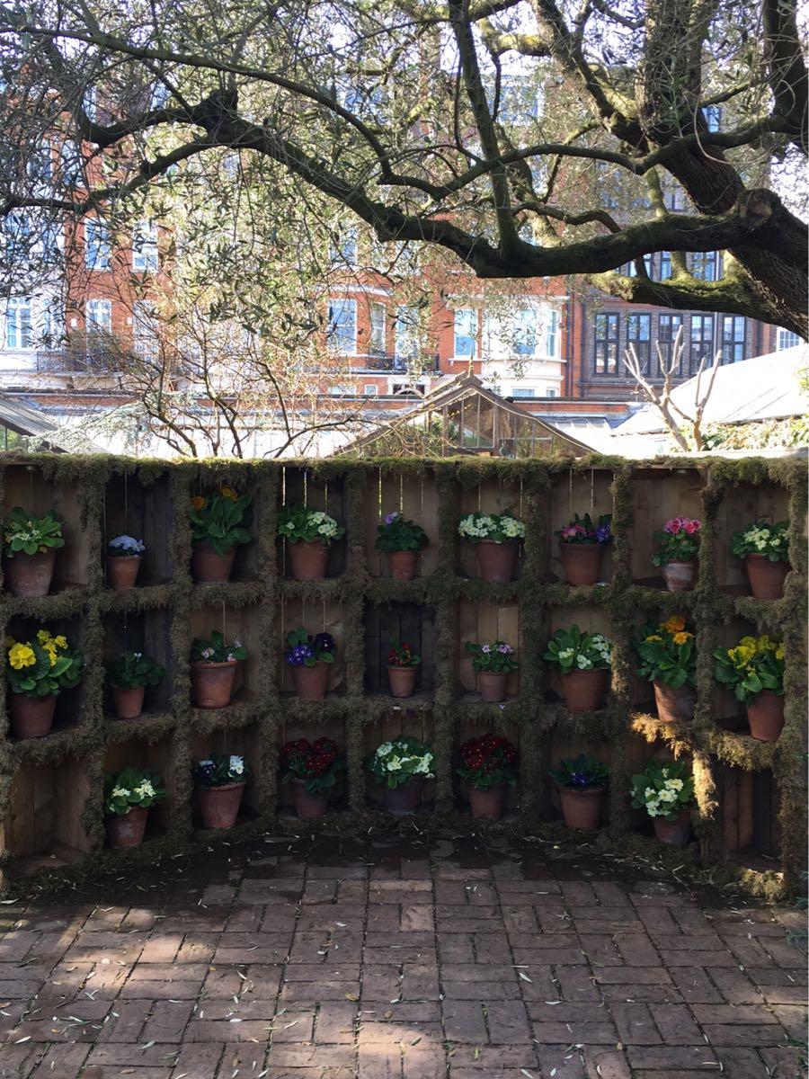 Chelsea Physic garden, Chelsea, London